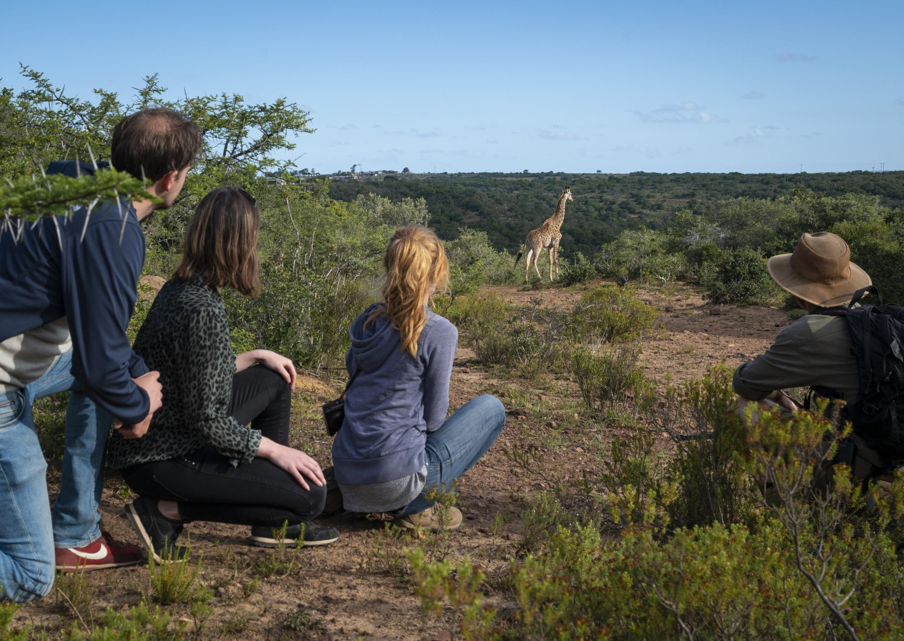 Giraffe tracking experiences on foot