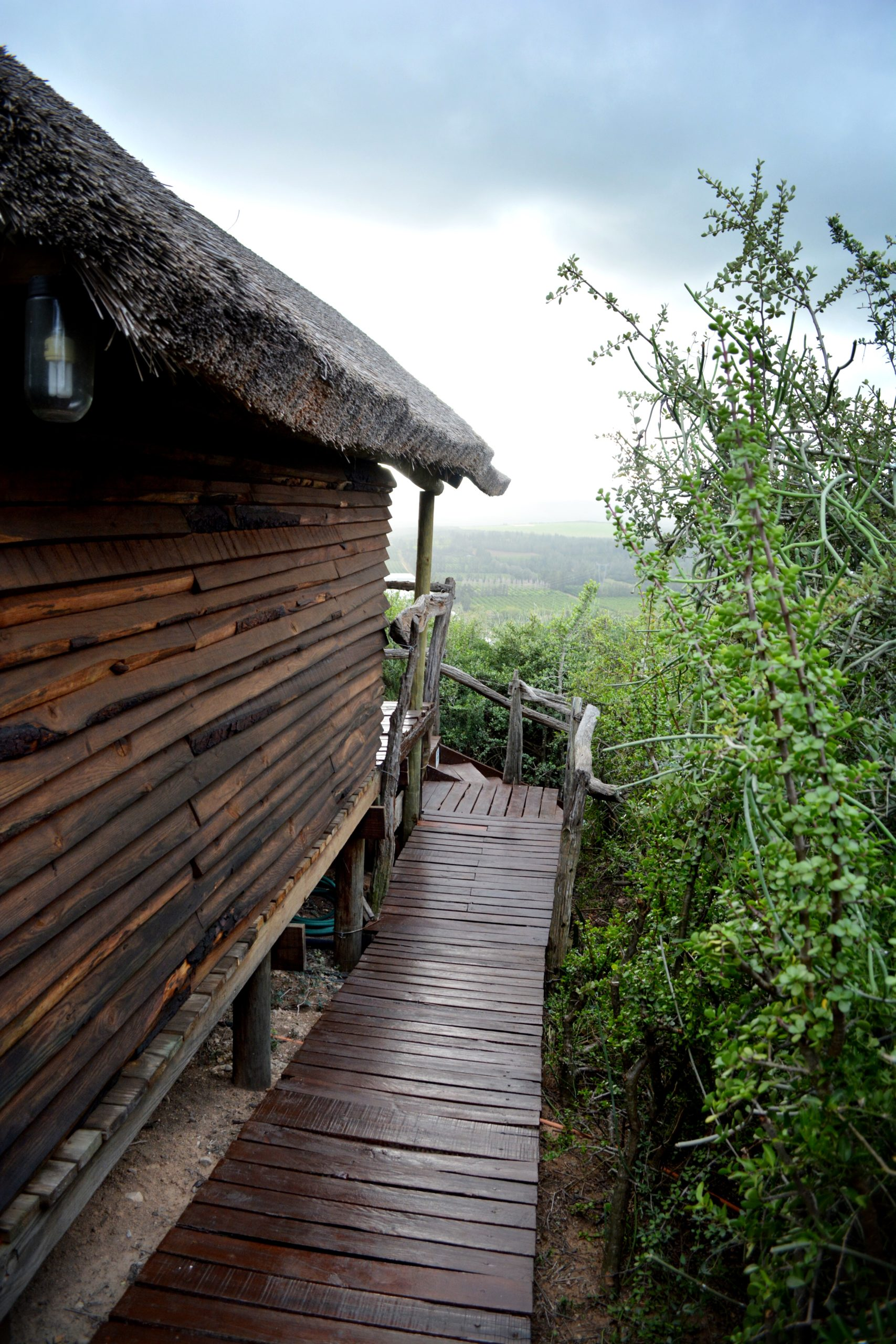 Addo Dung Beetle Bush Cabins-02