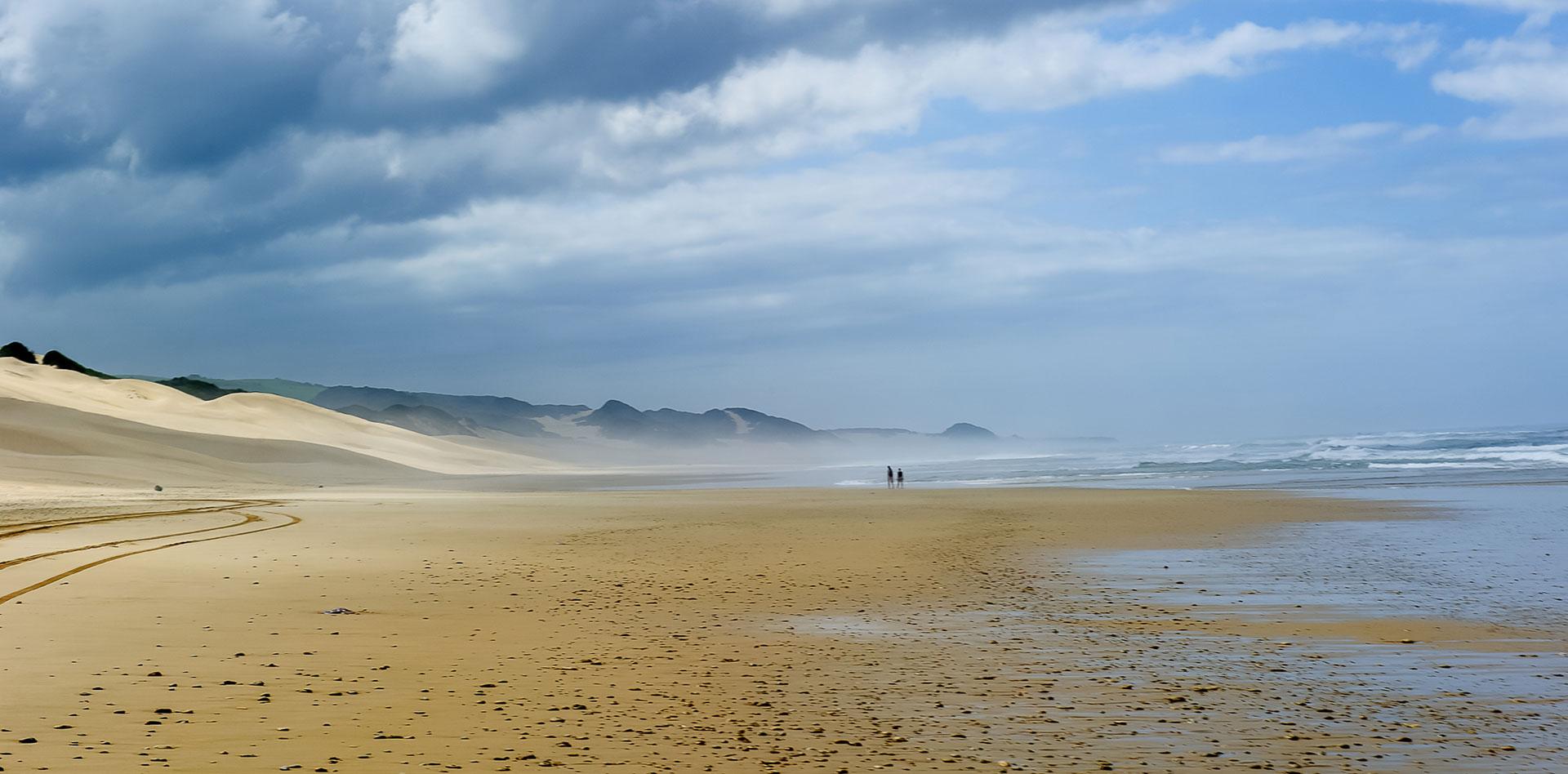 Alexandria-dune-field