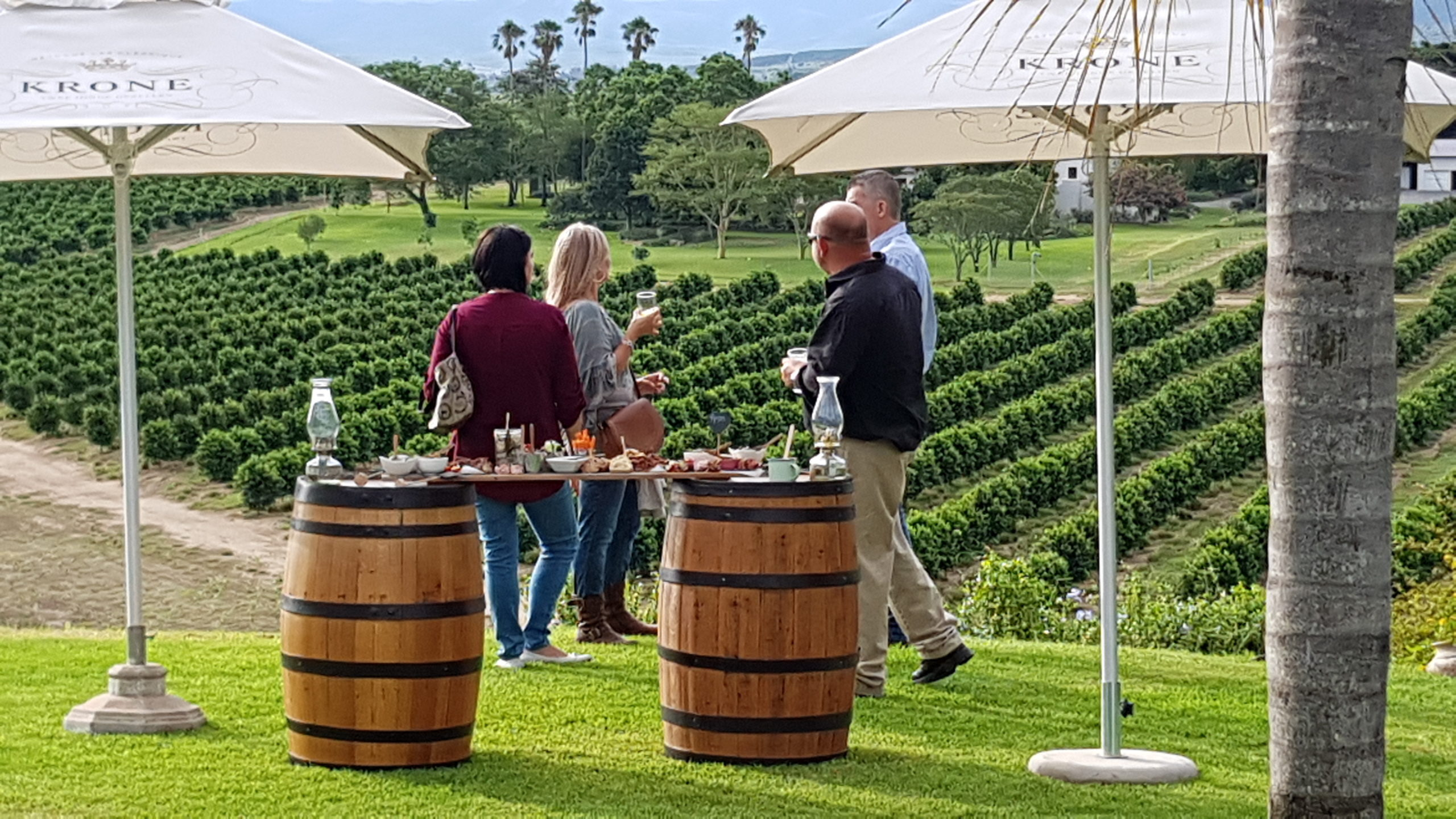Canapes served on the lawn overlooking the citrus orchards and Zuurberg Mnts
